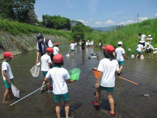 川に親しみ、地域の自然環境に関心 1