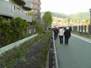 琵琶湖疏水沿いに百々川は流れています。