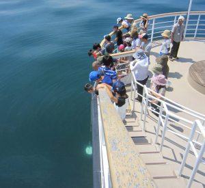 ⑩北湖での「透明度測定」