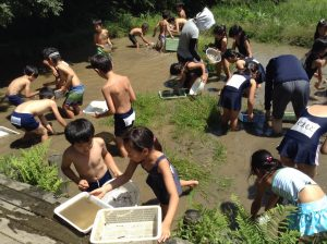 泥の中から生き物がたくさん出てきます。