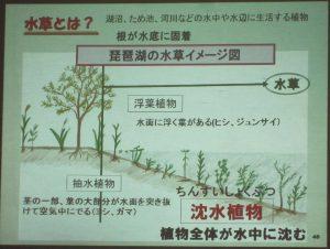 ③-3 水草班 「水草の学習」