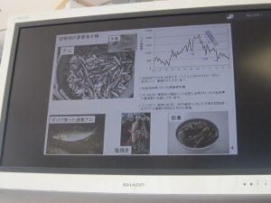 ⑧-2 琵琶湖の魚介類